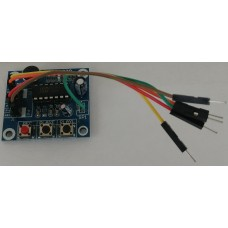 Voice Recorder Board WITH WIRES for IDOM4